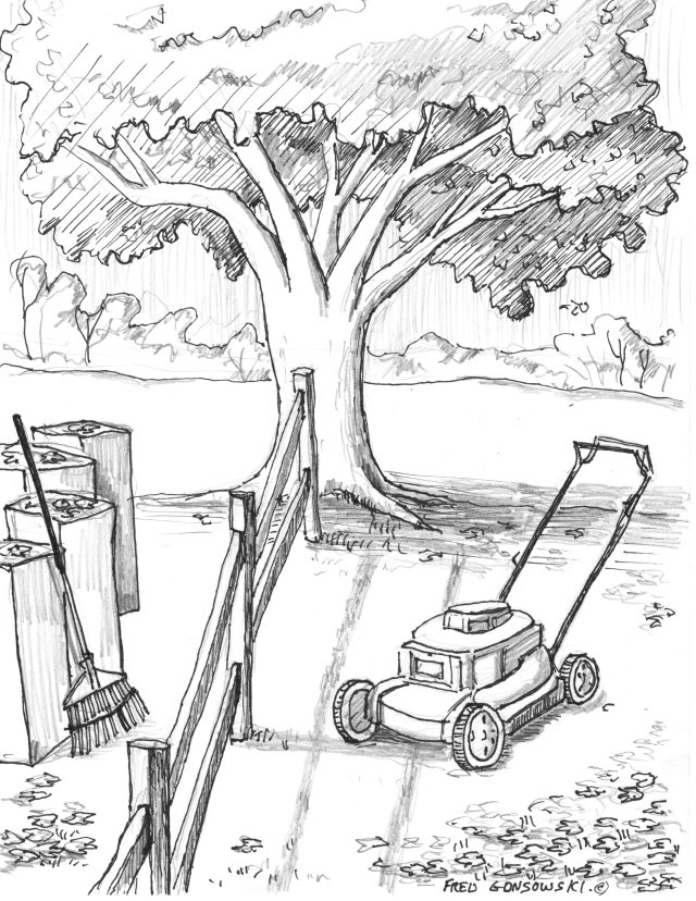Raking or Mowing, which side of the fence are you on?