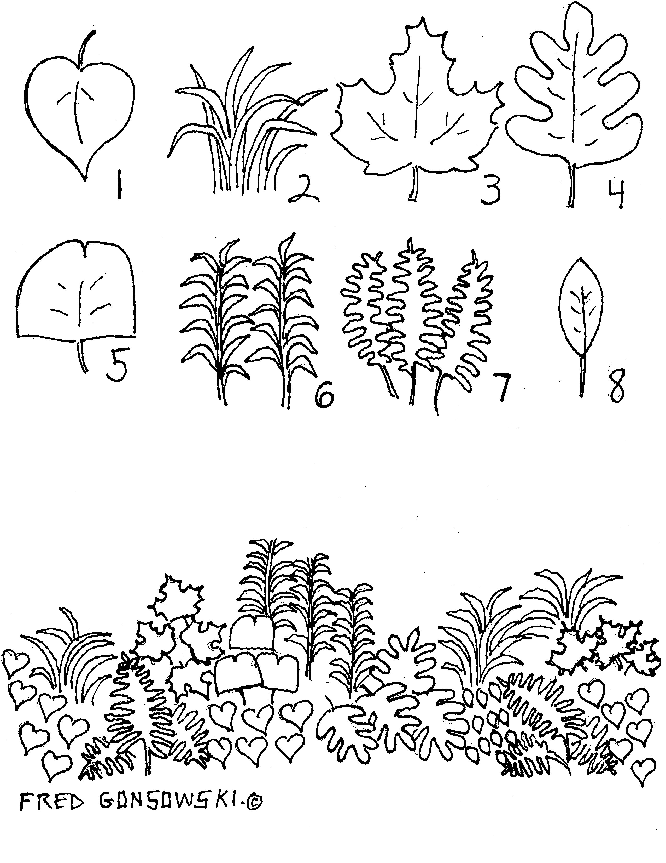 Perennial Garden Design Is All About Shapes Of Leaves.