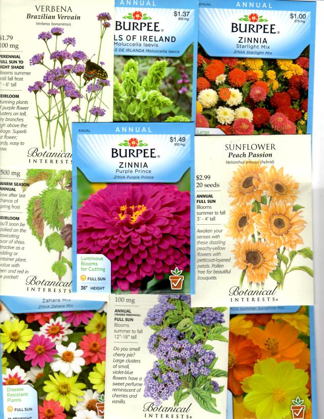 This year try growing some Annuals from Seed, and enjoy their Flowers all Summer long