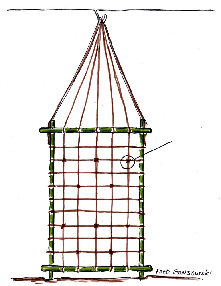 An Easy to Make and Inexpensive Trellis for Clematis, Morning Glories and other Vines (3/4)